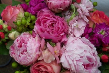 In Season Florals: Summer / The best way to save money and fossil fuels? Choose in-season, local flowers. / by I Do Foundation