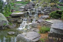 Gardens: The Element of Water / by Andee Barbour