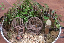 Fairy Gardens / by Denise Godsey