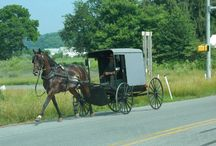 amish / by Pat Williams