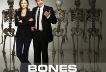 Favorite TV Shows Eva / by Melissa Davis