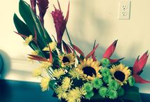 Flowers, Cakes, Events... Oh My! / by Daniella B