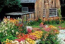 Beautiful Barns / by Tiffani Frandsen