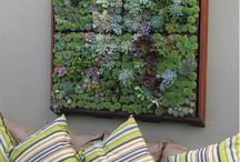 Living wall / by Ama Navidi