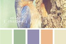 Colour Palettes / by Amy Sheaves