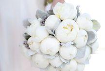 Florals  / by Julie Mitchell