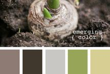 Color and Theory / by Kat Hicks