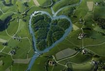 Heartbeat / by sweet boo