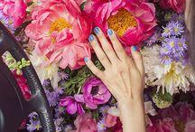 fleurs  / by Shelley AM