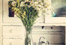 Flores / by Elenara Leitão