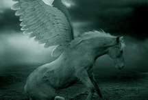 pegasus project / by Kody Berry