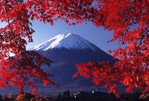 Japan so beautiful !!!!!! / Awesome !!! / by Lysbeth Rae Parker