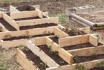 Gardening in Raised Beds / Tips and ideas for raised-bed gardening. / by Horticulture Magazine