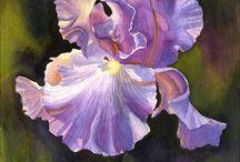 flower paintings / by lee philip