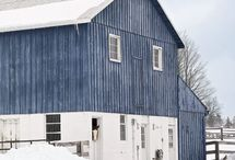 I Love BLUEs... / by Ann (Vintage River Ranch)