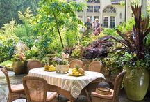 Gardening & Yard / by Tammy Talley