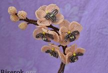 Beaded Flowers / by Sue Onyeo