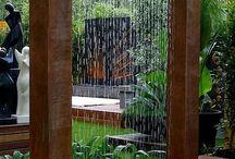 garden / by Sandra Eman