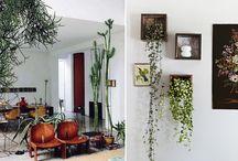Home Things / by jess hanlon