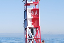 East Coast Buoys have more fun / by Sin Ister