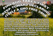 No GMO  / I'm not a science experiment and neither is my family other country have said no years ago and we are lagging behind  / by Nicole White