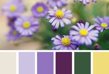 colour charts 2 / by Yvonne Fitzell