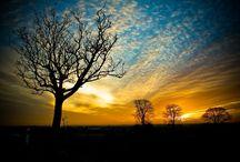 Sunsets / by Garden Design