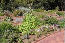 Herb Garden / by Cedar Valley Arboretum