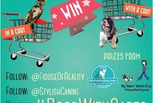 Contests & Giveaways / by Fidose of Reality