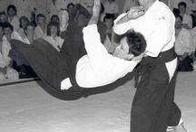 Martial Arts / by Brian James