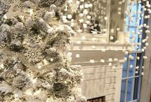 Christmas - Winter White / by June Parker