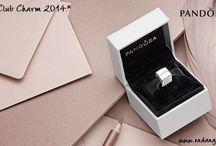 Pandora Club Charm 2014 / by Endangered Trolls