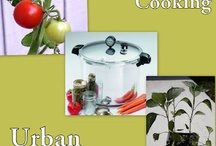 pressure cooking recipes & how to's / by Donna Wilson