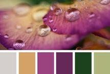 Floral Palettes / by hi note