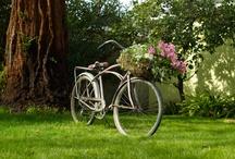 Garden To Grow / by Adrien Beatty