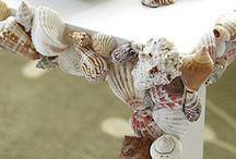 Sea shells / by Gillian R.
