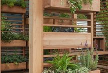 Outdoor space / by Michelle Evans
