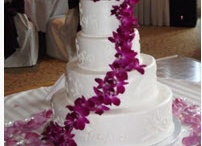 Wedding & Events / by shelby miller