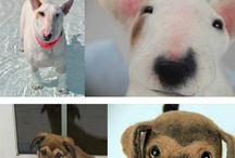 dogs / by Shelley Steffen