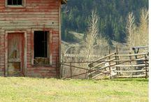barns ♥ / by Lauren Adair Cooper