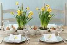 Easter / by Majda Molicnik