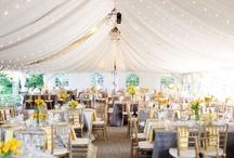 Future Wedding Ideas / by Samantha Phillippi