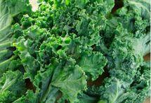 healthy eating / by Lori Biggs