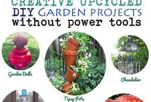 Do It Yourself Gardening / Here is a great board for all of our Walter Drake customers.  We will be posting great do it yourself projects for around the house. / by Walter Drake