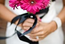flowers / by Flavian Mihai