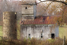 Barns / by Jackie Donaldson