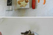Cleaning / by Amy Wolcott Farotti