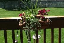 Back deck/yard & front porch/yard / by Tonya Sexton