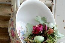 Spring has sprung / by Denise Lachinski