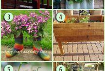 Gardening / by Heather N